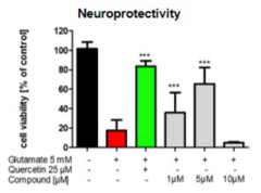 Glutamate-induced oxidative stress test in a neuronal cell line confirms hybrids to have a pronounced neuroprotective effect comparable to positive control quercetin but already at much lower concentration.